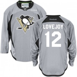 Ben Lovejoy Pittsburgh Penguins Reebok Authentic Gray Practice Team Jersey ()